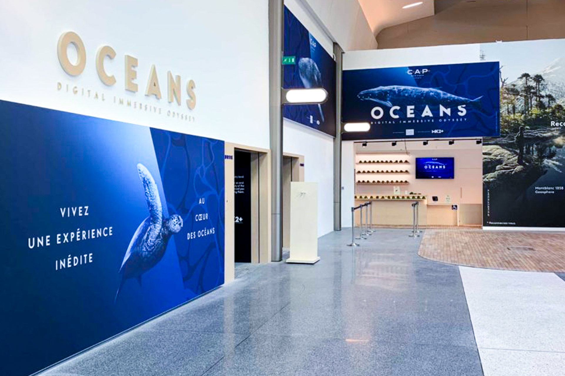 OCEAN_REAL3