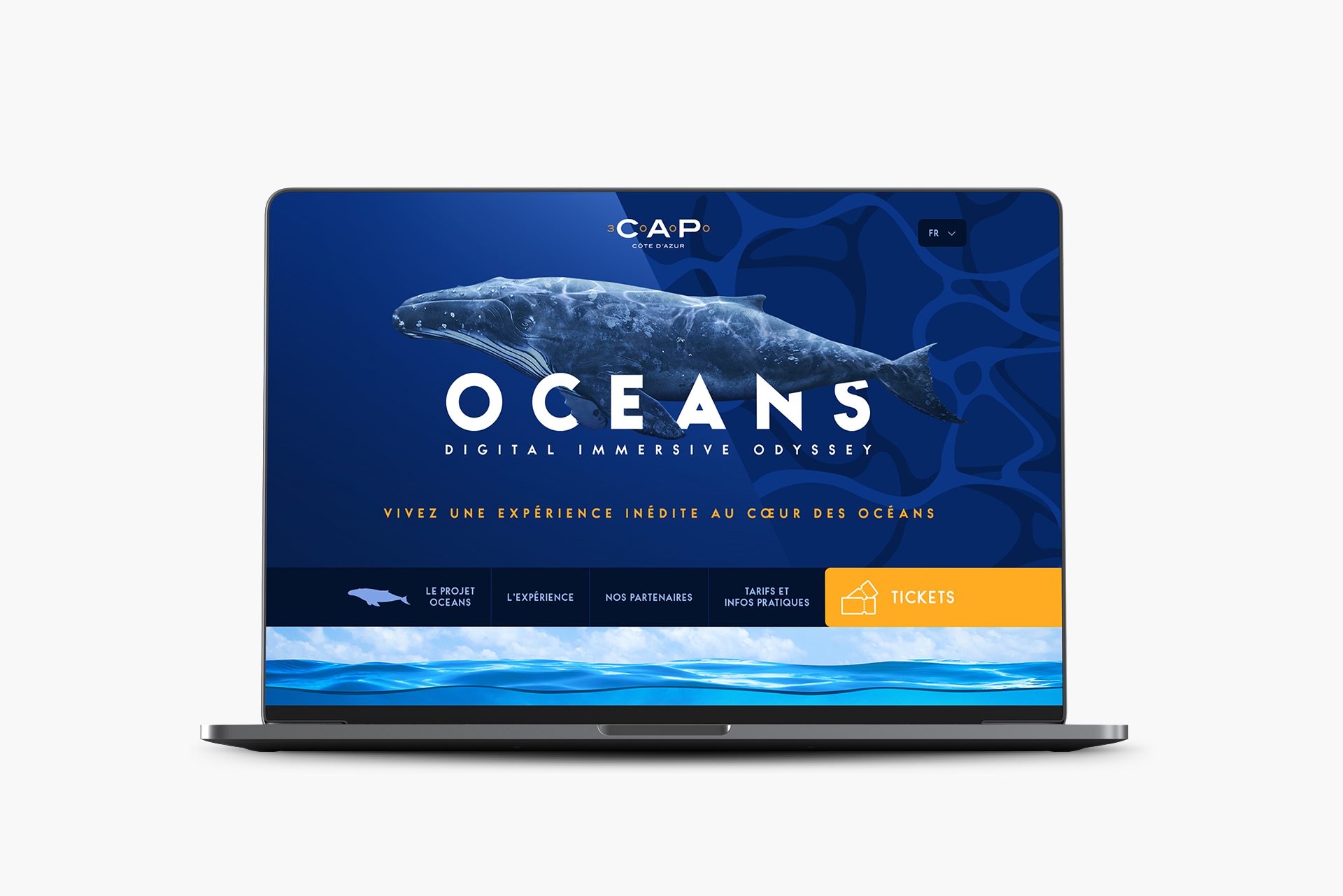 WEB_OCEANS